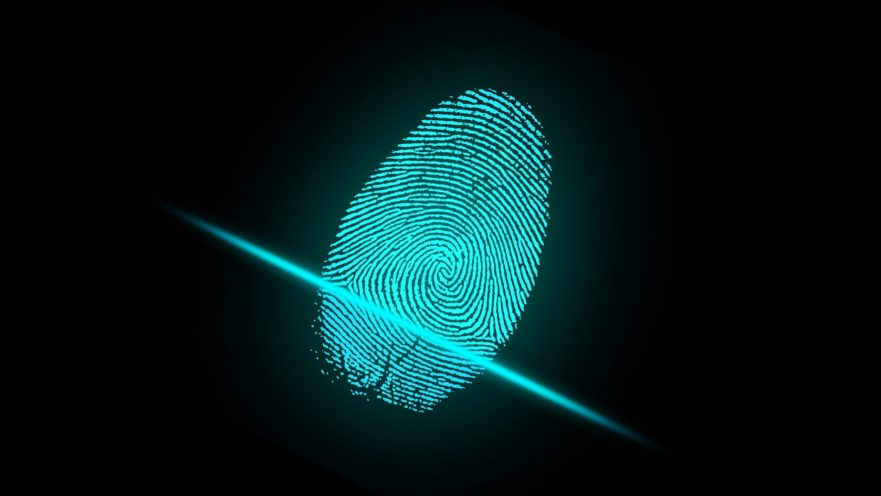 Fingerprints, palm prints, vein patterns and personal scent are examples of biometrics that can be used to identify you.